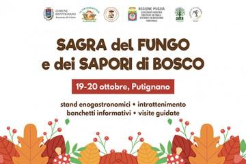 SagraFungo2019